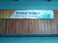 Баннер «Трезвый Таганрог» в спортивном комплексе